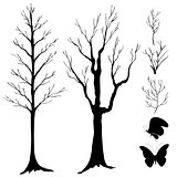 silhouette vector, tree, branch and butterflies