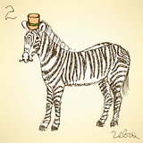 Sketch fancy zebra in vintage style