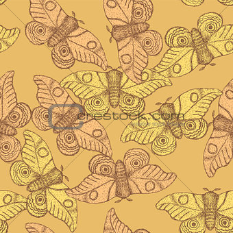 Sketch moth incect in vintage style