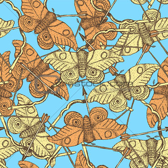 Sketch moth and bow in vintage style