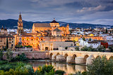 Cordoba, Spain at the Roman Bridge and Town Skyline