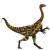 Deinocheirus over White