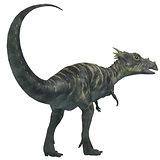 Dracorex Dinosaur on White