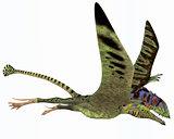 Peteinosaurus Dinosaur
