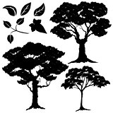silhouette vector, tree and leaves 2