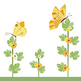 yellow butterflies and flowers
