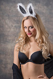 Blonde, sexy rabbit