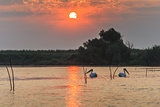 sunrise in the Danube Delta, Romania