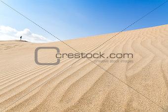 Canary islands, Maspalomas. Spain. Sand dunes.