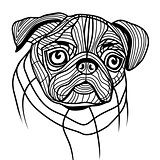Dog pug head vector