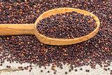 black quinoa grain grown in Bolivia
