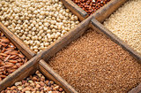 teff and other gluten free grains