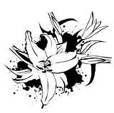 Grunge Lily Flower Bouquet