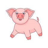 Vector illustration of cute pig, funny piggy