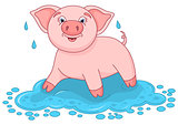 Vector illustration of cute pig in a puddle, funny piggy