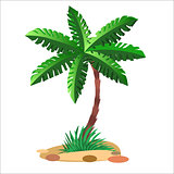 Green palm tree on a neutral background