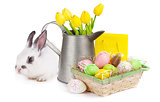Easter with colorful eggs, yellow tulips and rabbit