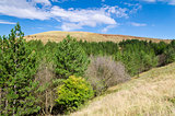 Sunny Blue Sky, Meadow and a hills near the village Katselovo