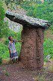 stone mushroom