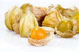 cape gooseberry on white background