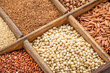 sorghum and other gluten free grains