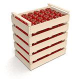 tomato in crates