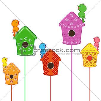 Amusing birds singing in their homes