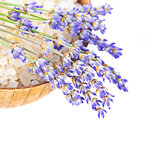 Bowl with salt and lavender flowers isolated on white background