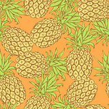 Sketch tasty pineapple in vintage style