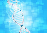 Human DNA. Background of white ring with hexagon and information board