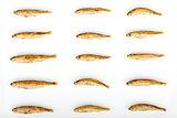 Fried Sand Smelt Repetitive