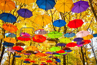 autumn umbrellas in the sky