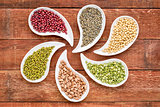 beans, lentils and pea abstract