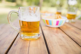 Beer and snacks on picnic table