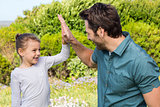 Father and daughter high fiving