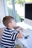 Little boy using computer in the living room