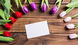 Tulips forming frame around white card