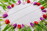 Tulips forming frame