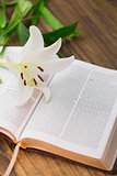Lily flower resting on open bible