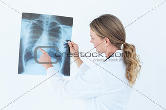 Focused doctor looking at xray