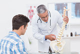 Doctor explaining a spine model to patient