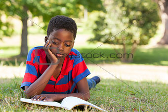 Little boy reading in the park