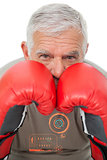 Composite image of close-up portrait of a determined senior boxer