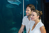 Couple looking at fish in tank