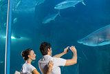 Couple taking photo of shark