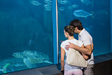 Happy couple looking at fish tank