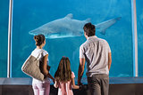 Happy family looking at shark