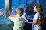 Cute siblings looking at fish tank