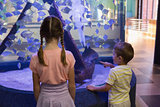 Cute children looking at fish tank