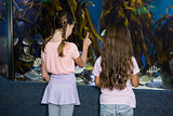 Cute children looking at fish tank